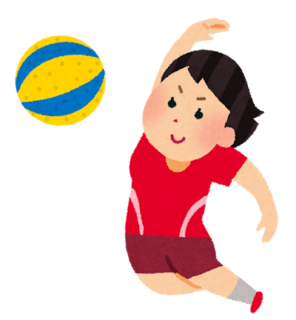 sports_soft_volleyball[1].png
