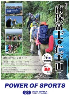 spring-trek-p-01-730x1024[1].png